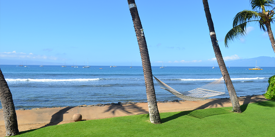 We are now offering Internship Opportunities in Maui!